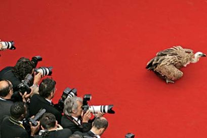cinema-Cannes