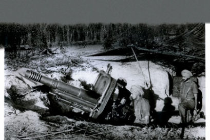 19392