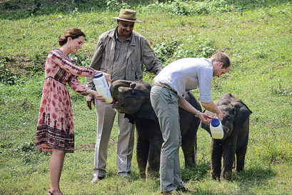 MILK OF ROYAL KINDNESS: Kate and William feed elephant calves at the Kaziranga rescue centre as the columnist looks on