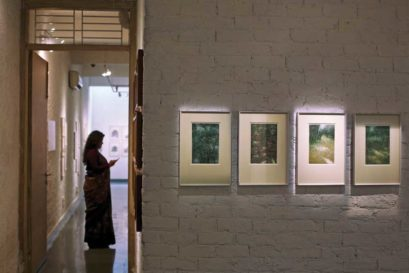 Verdant Memory on display at Delhi's Gallery Threshold