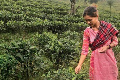Ribahun Umsong, 26, tea entrepreneur in Mawlyngot