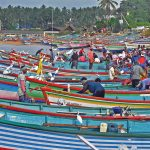 Kerala's Fishing Community: In Deep Waters