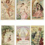 Perfumes and Prophylactics