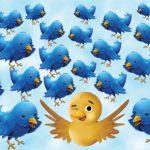 Twitter's Convenient Truths